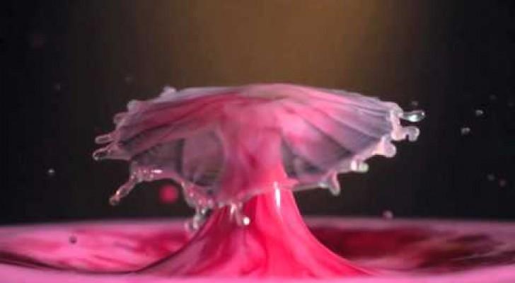 Le più splendide immagini in Slow Motion