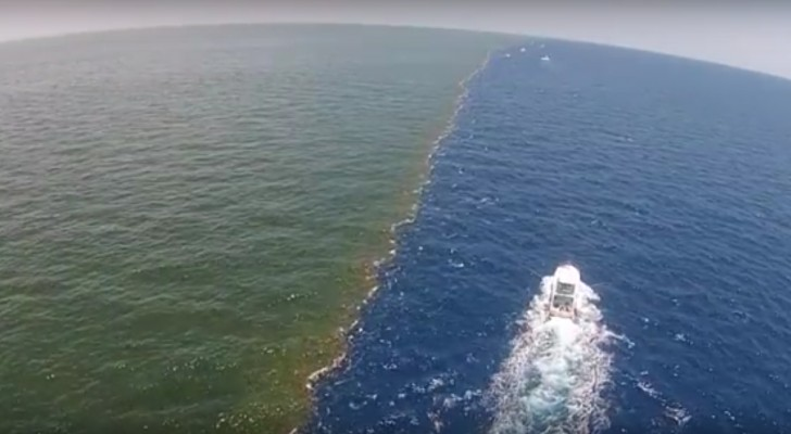 Spectacular! --- When a river flows into a gulf ...