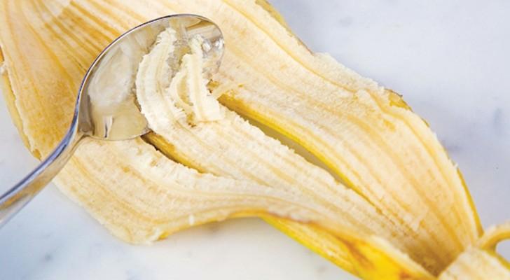 Nous jetons tous la peau de banane: voici pourquoi nous ferions bien de ne pas le faire