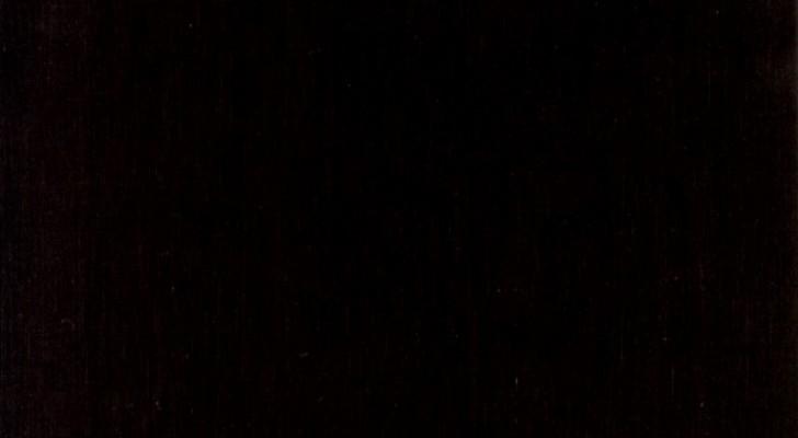 Ils gardent des fossiles dans un placard pendant 60 ans, puis ils découvrent qu'ils appartiennent à une créature extraordinaire