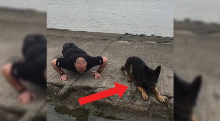 Zijn baasje start de challenge: deze politiehond gaat de uitdaging maar al te graag aan!