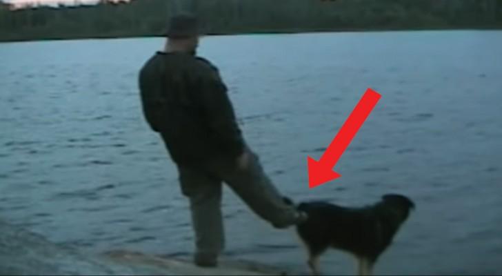 Tenta empurrar  o cachorro na água enquanto pesca: veja como acaba tudo!