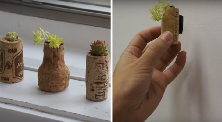 Zo transformeer je kurken in kleine plantenpotjes voor aan je koelkast of op je vensterbank!