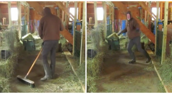 Old MacDonald didn't have moves like THESE! Check it out!