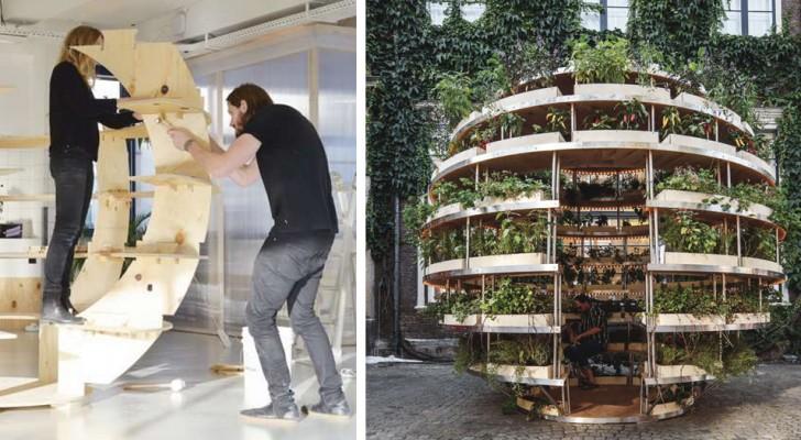 Degli architetti creano un orto fai-da-te che può fornire cibo a un intero condominio