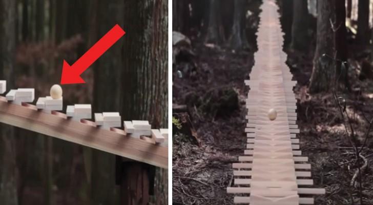 Um xilofone gigante na floresta: o som que produz é a coisa mais linda que você vai ouvir hoje.