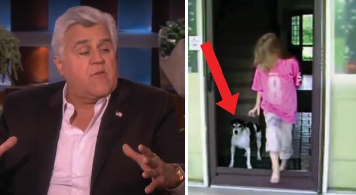 Een bekende komiek bewijst op TV dat katten intelligenter zijn dan honden: ben jij nu ook overtuigd?
