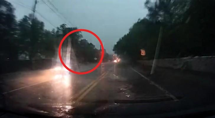 Un relampago cae sobre el arbol al lado de la calle: la potencia del fenomeno es impresionante