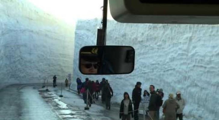 Japon y 15 metros de nieve