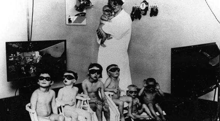 Projekt Lebensborn, das Naziexperiment für die Rassenhygiene