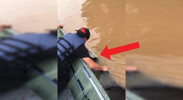 Drowning Cow saved by compassionate rescuers!