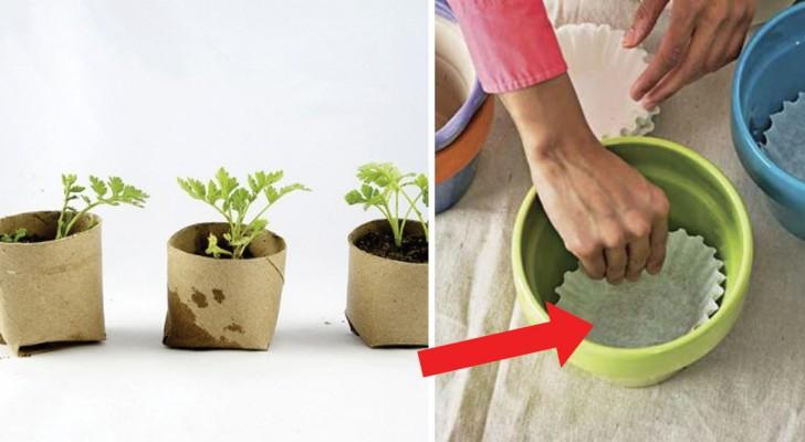 Projecten, tuinideeën en doe-het-zelftips die iedere liefhebber van groen zou moeten weten