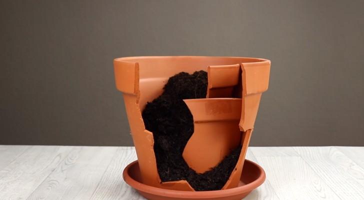Ao invés de jogar o vaso quebrado fora, foi reutilizado de forma inteligente para um novo uso. Genial!