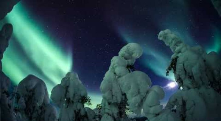 A natural spectacle in Lapland