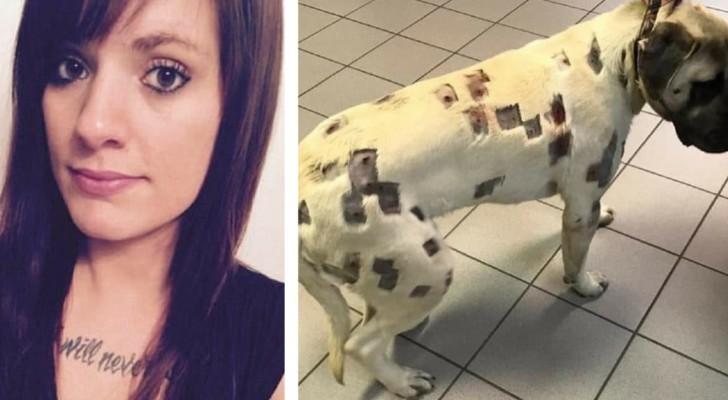 Elle pensait que c'était des piqûres d'insectes, mais quand le vétérinaire l'a ausculté, elle a appelé la police