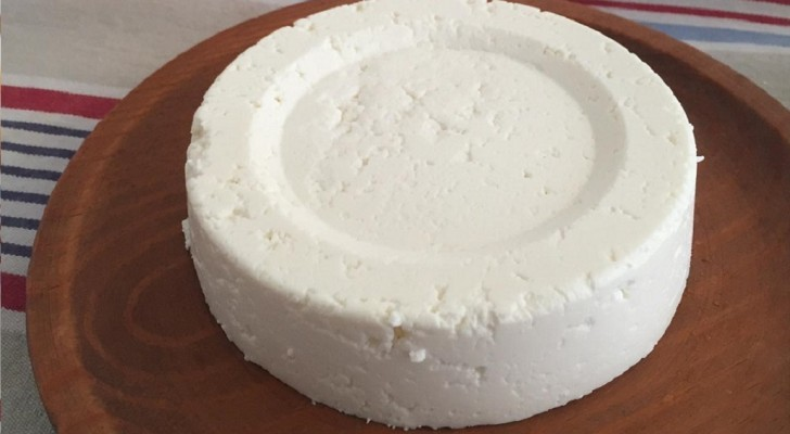 Discover how to make your own homemade fresh cheese!