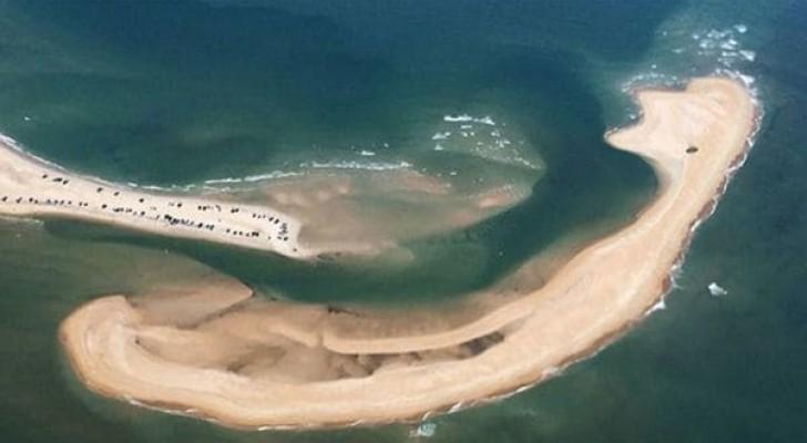 Veja a nova e perigosa ilha que apareceu no Triângulo das Bermudas!