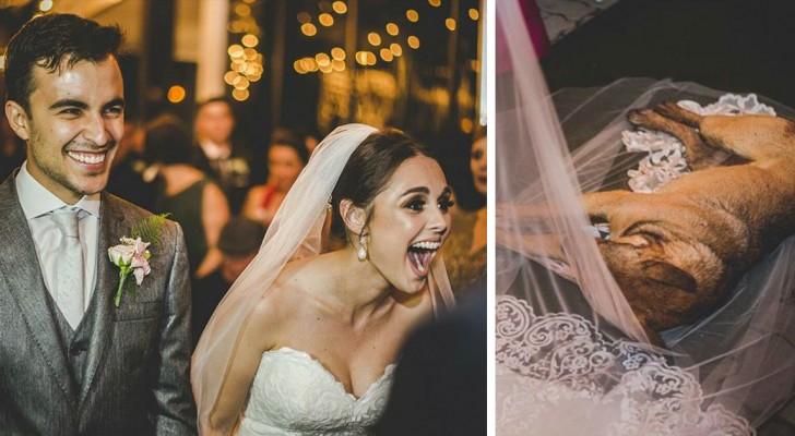 Un cane s'intrufola al loro matrimonio: la reazione della coppia intenerisce il mondo