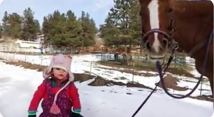 Emma e seu cavalo