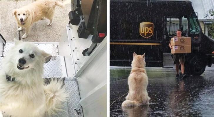 I corrieri UPS hanno creato una pagina dolcissima su cui postano le foto con i cani che incontrano