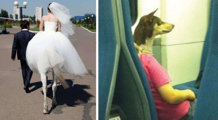 14 foto che dovrete osservare con attenzione per capire veramente di cosa si tratta