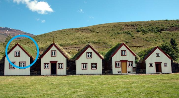 Aus welchem Grund bedeckt man in Island die Dächer der Torfhäuser?