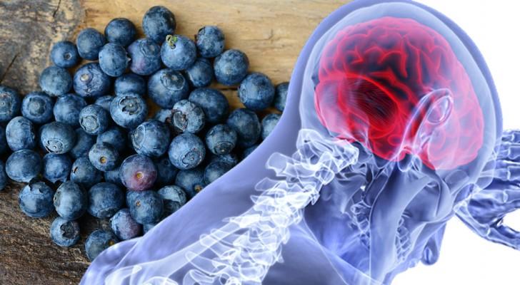 7 super-alimenti molto comuni che ti aiutano a potenziare l'attività cerebrale