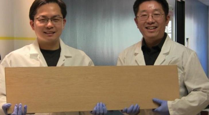 des chercheurs d veloppent le super bois plus dur que l 39 acier et capable d 39 arr ter les balles. Black Bedroom Furniture Sets. Home Design Ideas