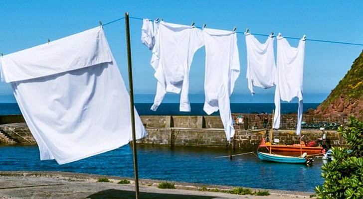 Con estos 5 ingredientes es posible obtener un lavado blanco como el primer dia