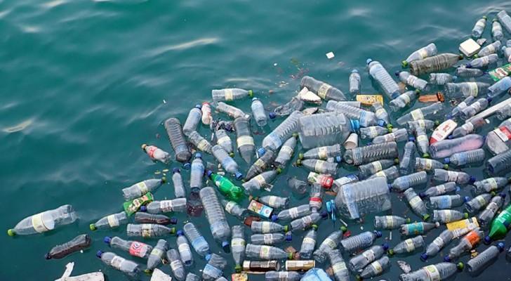La quantità di plastica presente negli oceani triplicherà in meno di 10 anni