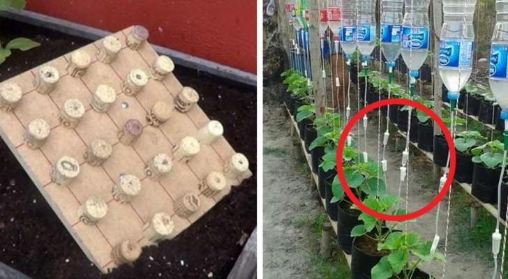 Liefhebber van tuinieren? Met deze trucs word je een expert wat betreft groen en doe-het-zelven!