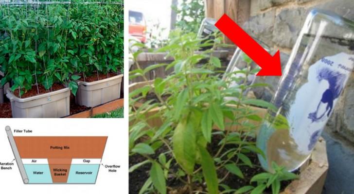 11 sistemas de riego automatica DYN que hacen la jardineria todavia mas facil