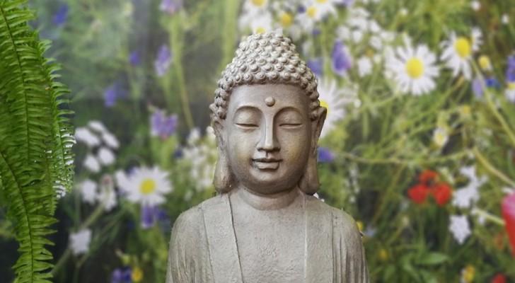 Las 12 leyes del Karma que debes conocer para vivir mejor y en armonia con el projimo