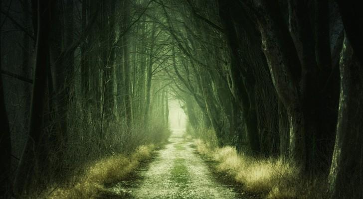 Kort freudiansk test: Vad är gömt i ditt undermedvetna?