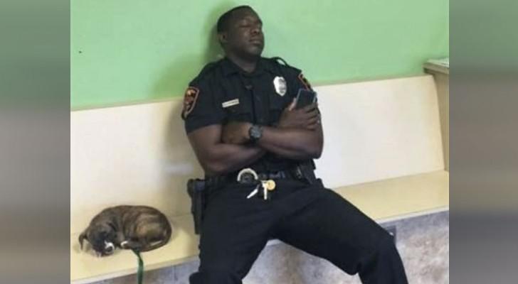 Un policier épuisé décide d'aider un chiot en difficulté : quelques heures plus tard, il sera acclamé comme un héros.