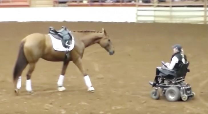 Ein Pferd nähert sich einer Frau im Rollstuhl: Die anschließende Show entführt das Publikum