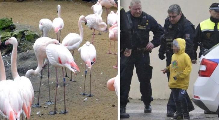 Den Respekt vor Tieren nicht an Kinder weiterzugeben hat sehr traurige Konsequenzen