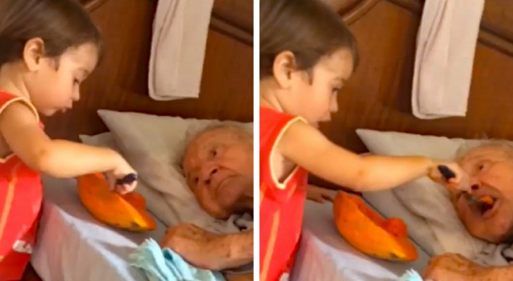 Uma criança ajuda o seu avô a comer... o vídeo emociona milhares de pessoas!