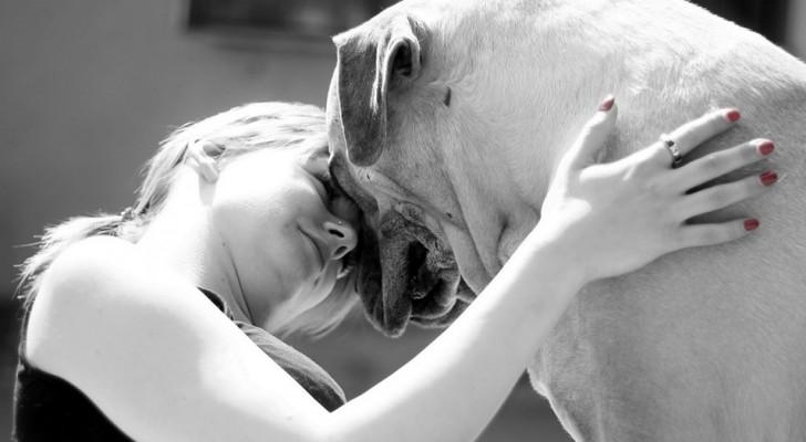 Met je huisdieren praten is een teken van grote intelligentie: dat zeggen experts!