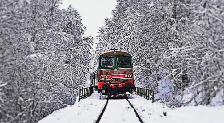 La Transiberiana d'Italia: ecco il treno d'epoca che viaggia tra borghi dimenticati e una natura spettacolare