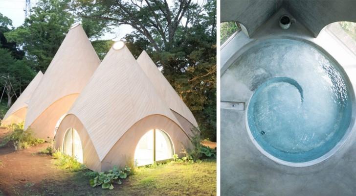 Due pensionate giapponesi si fanno costruire una casa nel bosco: il risultato suscita l'invidia del mondo intero