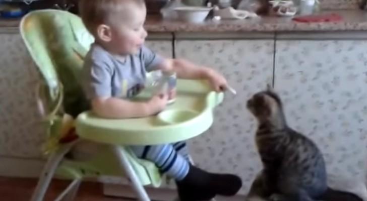 Een kindje deelt zijn eten met een kat: schattig!