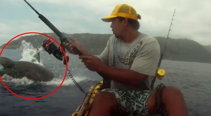 рыбалка на аленке