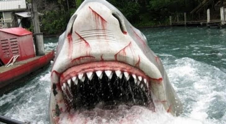 Die Schiffstour mit Hai als Verfolger: Eine Attraktion, die sich an einem der berühmtesten Filme der Geschichte inspiriert