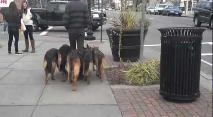 Caminhando pelas ruas com cinco fiéis guarda-costas