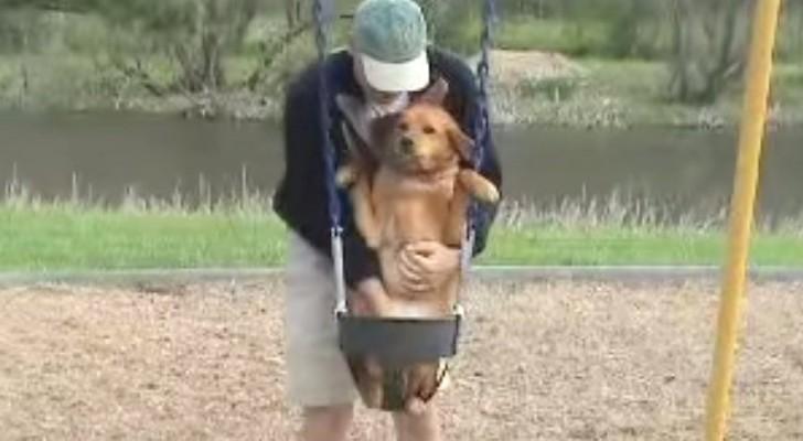 Eu também quero andar de balanço!
