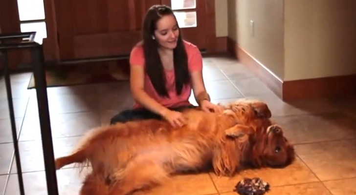 Una ragazza ha poco tempo per il suo cane cos sviluppa for Suo e suo bagno