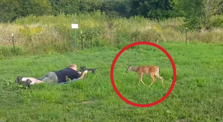 These men were shocked by the behavior of this cute little deer when they fired their gun !