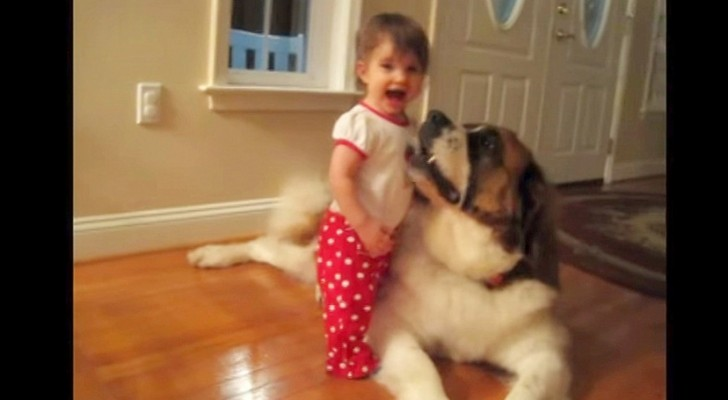This little girl hugs his best friend who is a little
