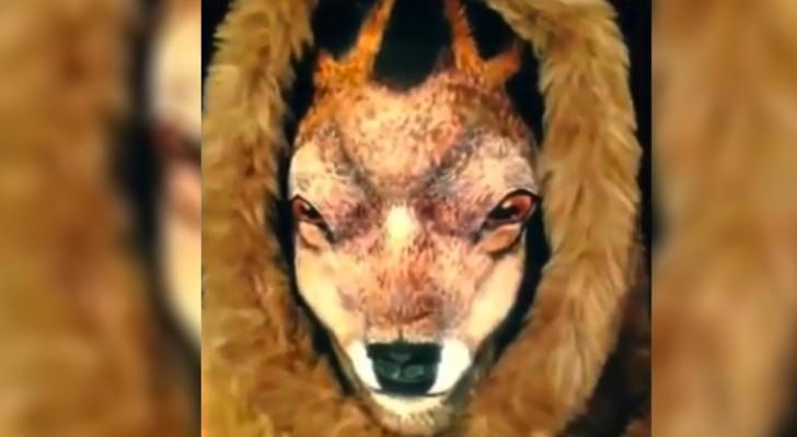 Puede parecer un ciervo, pero espera algunos segundos: QUE LOCO!